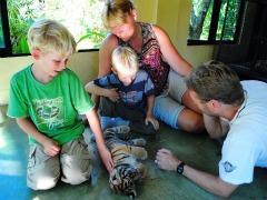 Tijgertje aaien in Tiger Kingdom