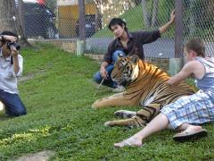 Een toerist met een grote tijger