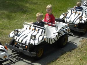 Safari-autootjes in Speelland Beekse Bergen