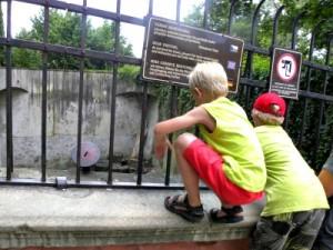 Kijken naar de beren rond het kasteel van Cesky Krumlov