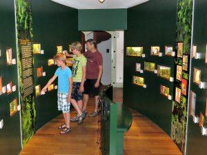 Sprookjes herkennen in het Grimm Museum in Steinau
