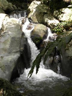Huai Kang Pla watervallen in de omgeving van Mae Chan
