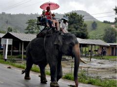 Op de olifant bij Ruammit village