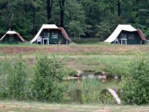 Een paar tenten op het Safaricamp Beekse Bergen