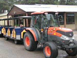 Struisvogelexpress met tractor in plaats van locomotief