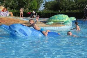 Speeldolfijnen in het aquapark