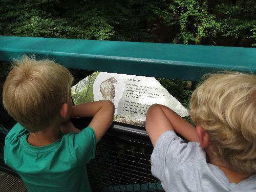 Informatie op het pad door de bomen