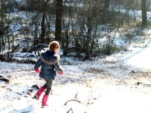 Sneeuw bij Landal Coldenhove