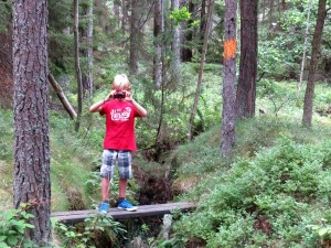 Tycho in de Zweedse bossen
