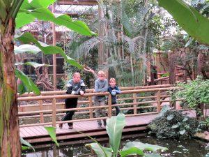 De tropische tuin bij Tropical Zoo