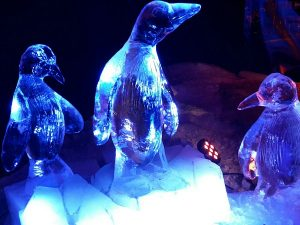pinguins van ijs bij de Ice Expo in Scheveningen