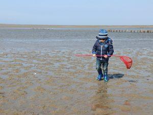 jongetje op strand met schepnet bij Mando