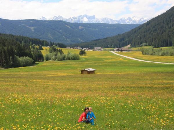 uitzicht op dolomieten met moeder en kind in een bloemenveld