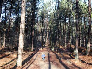 Zoonlief aan de wandel in het bos