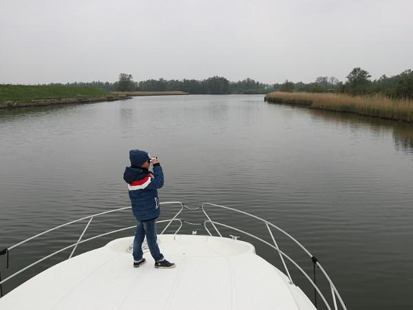 Bevers spotten in de Biesbosch