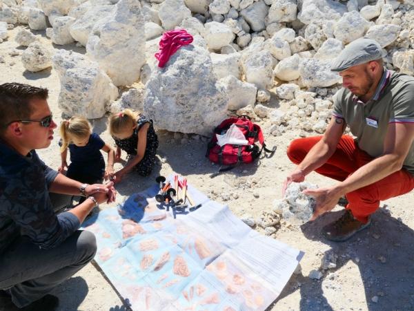 Uitleg over verschillende soorten fossielen