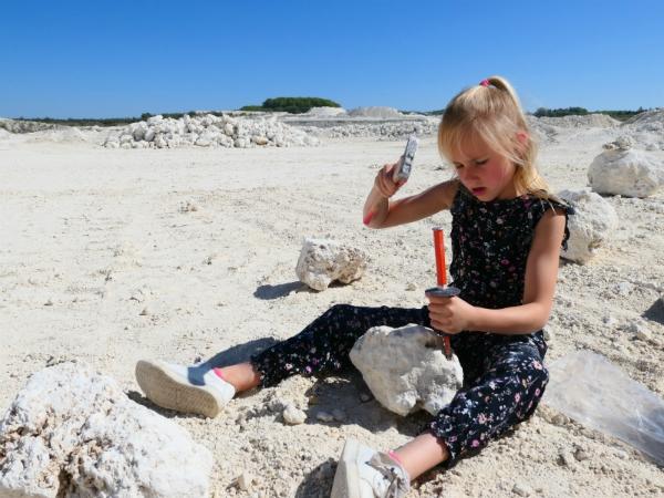 Op zoek naar fossielen in een steen