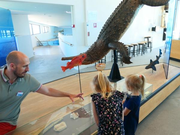 De kinderen krijgen uitleg over fossielen