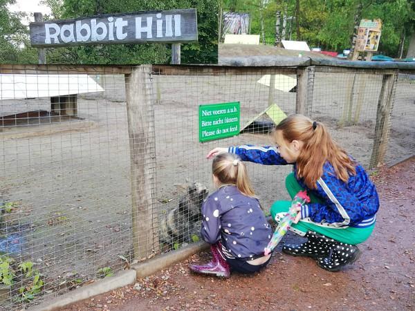 De meiden bij een konijntje op Landal Rabbit Hill