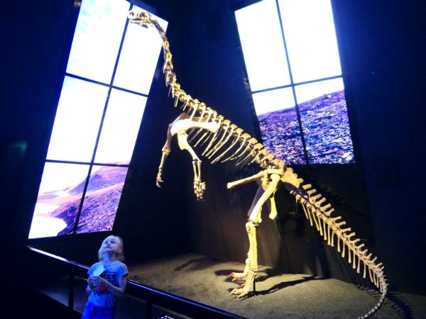 Sanne bekijkt het dinosaurus skelet