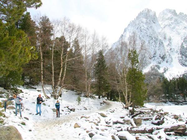 Vader en zoons glibberen door de sneeuw en gooien sneeuwballen