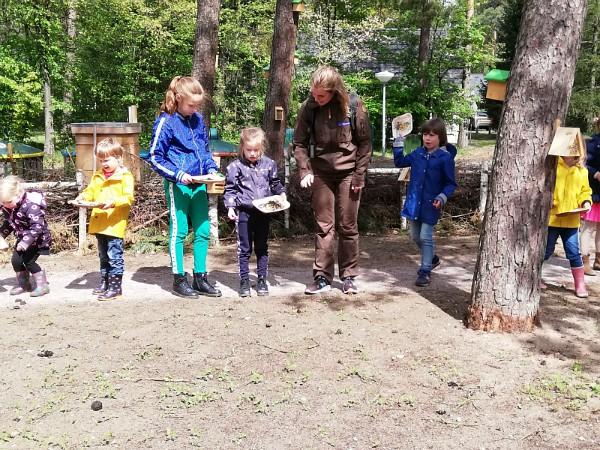 De kinderen leggen een wilde bloementuin aan