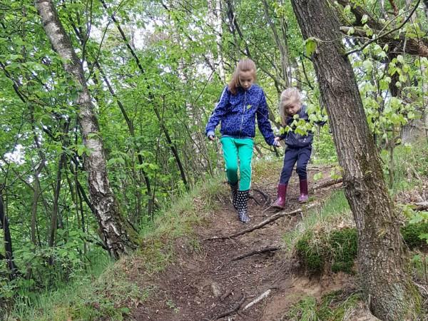 De kinderen wandelen in het bos