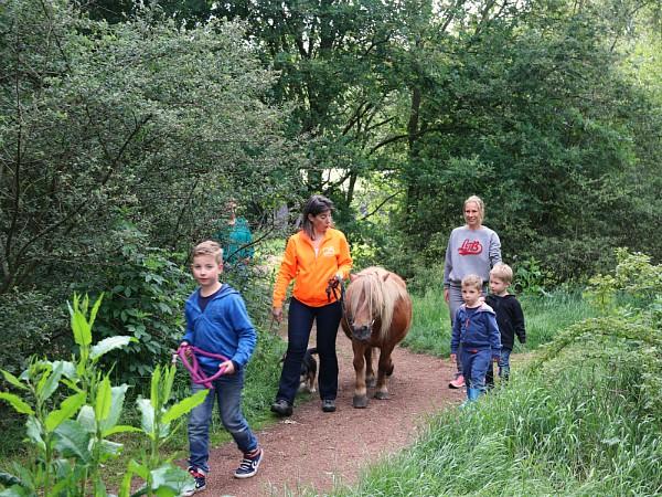 De pony wandelt gewoon mee naar je Boerenbed-tent!