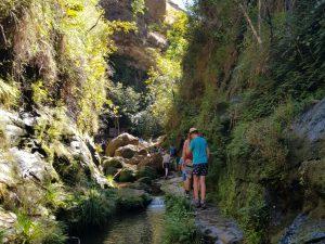Wandelen door de groene canyon in Isalo NP
