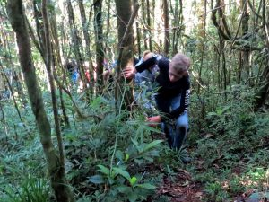 Wandelen? Het is vooral klimmen door de struiken in Ranomafana